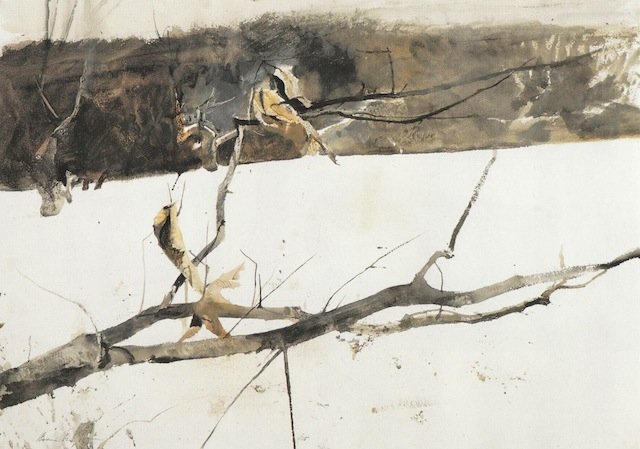 Andrew Wyeth-qidye-8