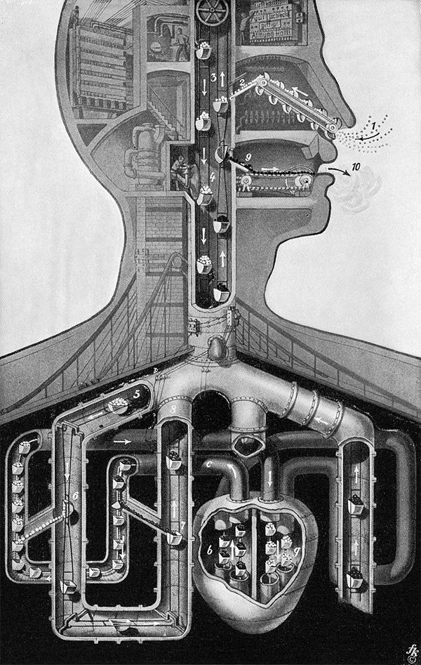 Fritz Kahn-qidye-3