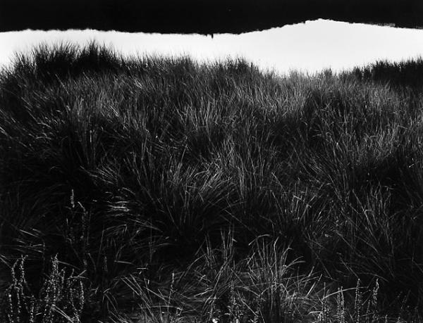 Jack Welpott-qidye-11