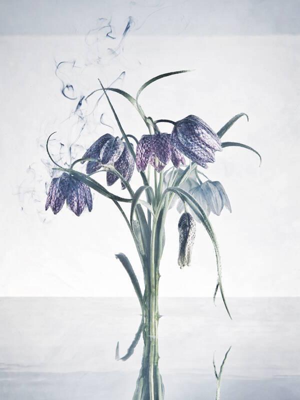 Charles Emerson-qidye-3