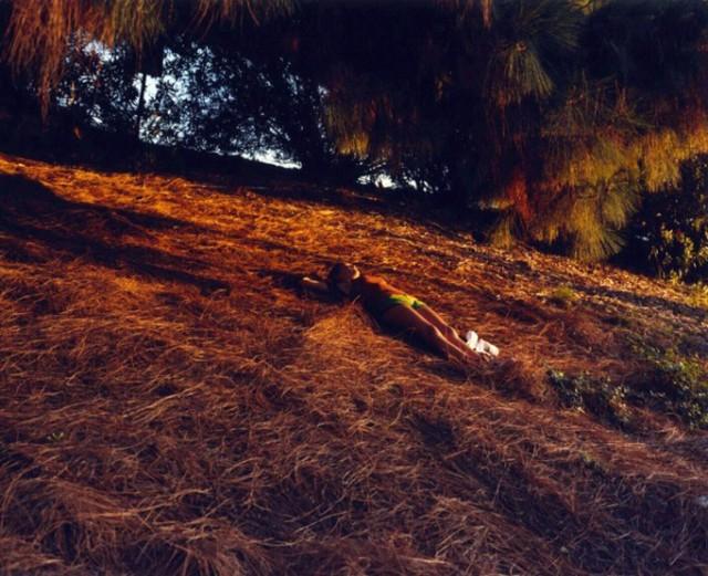 Glen Erler-qidye-14
