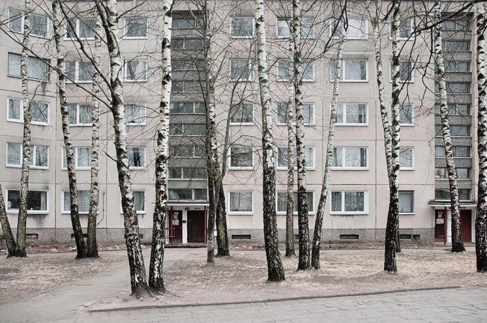 Roman Sakovich-qidye-2