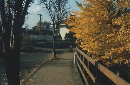 Tatsuyasu Watanabe-qidye-15