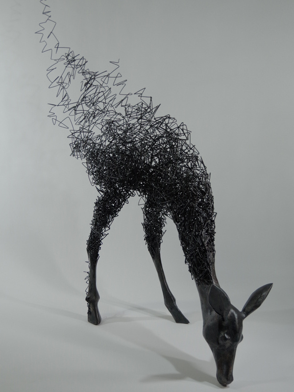 Tomohiro Inaba-qidye-1