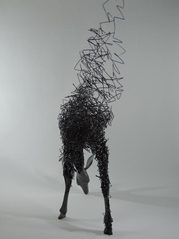 Tomohiro Inaba-qidye-5