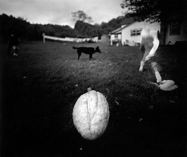 Sally Mann-qidye-15