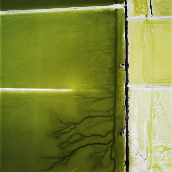 David Maisel-qidye-16