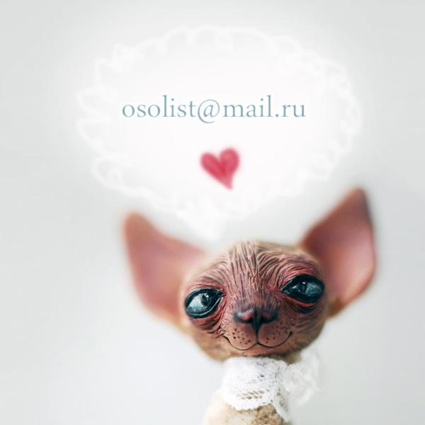 Oso Polar-qidye-11